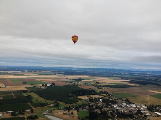 Vista Balloon Adventures : Vista Balloon floating over Oregon wine country