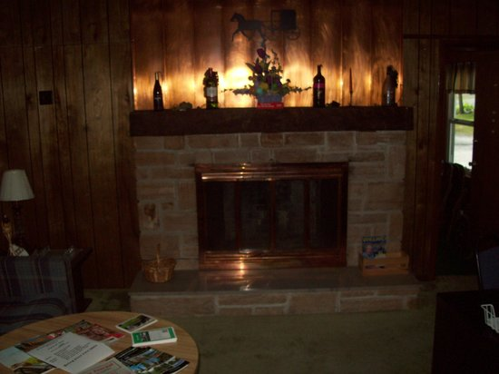 Fireplace For Chilly Nights In The Adult Lounge Picture