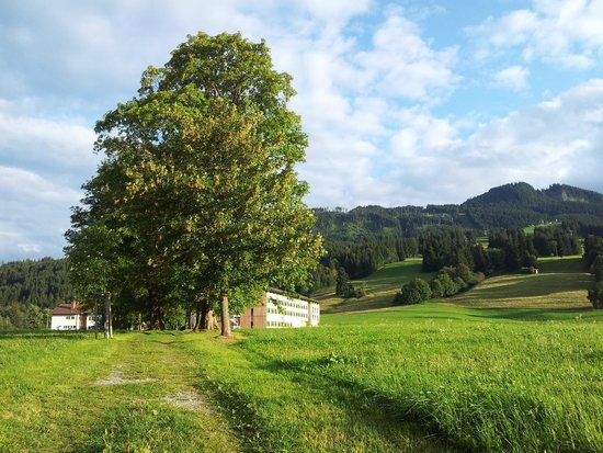 Explorer Hotel Neuschwanstein: veduta dalla strada che porta al bosco