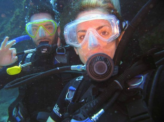 Coconut Tree Divers: Coconut Tree Deep Dive!
