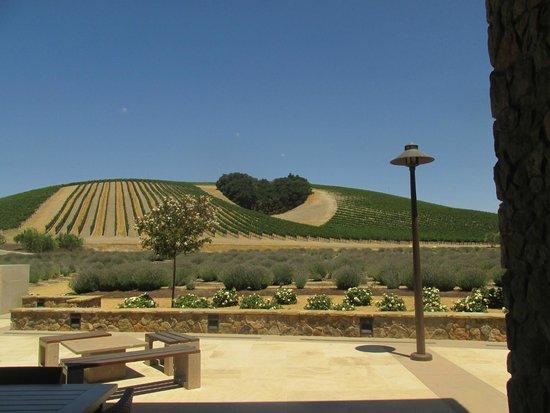 Niner Wine Estates: Niner for Lovers ( of wine that is !!!)
