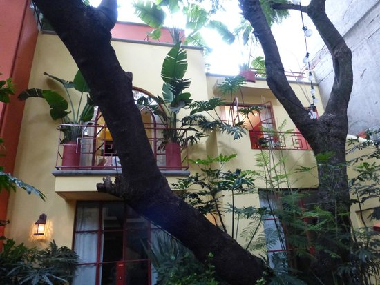 The Red Tree House: Another view of the courtyard