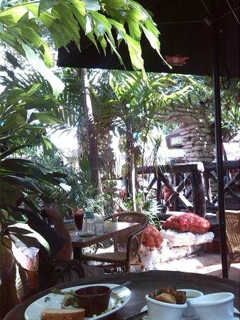 100% Natural: Giardino tropicale
