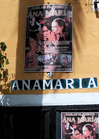 Casco antiguo de Marbella: Flamenco bar