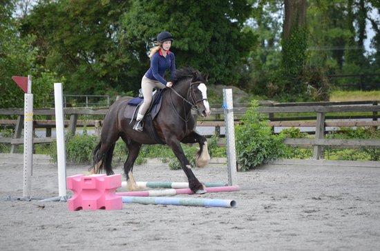 Annaharvey Farm Equestrian Centre : Hoppning