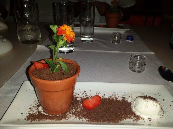 Villa Di Mare Luxury Suites : soufflè di cioccolata con gelato
