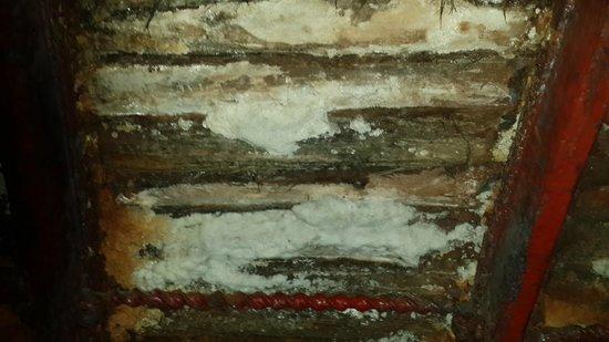 Cathédrale de sel de Zipaquirá : Salt seeping through the slats of the ceiling