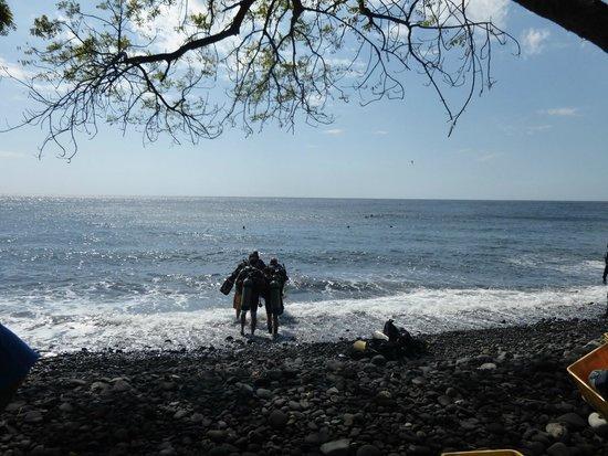 Euro Dive Bali : Let's dive!
