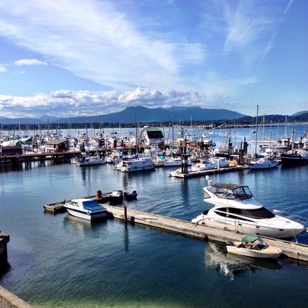 Oceanfront Suites at Cowichan Bay: View of Bay and marina from 414