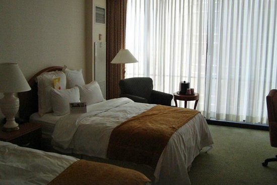 Detroit Marriott at the Renaissance Center: Loved our Room