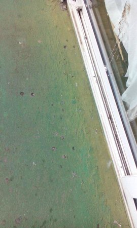 Pontin's Prestatyn Sands Holiday Park: outside apartment dirty windows