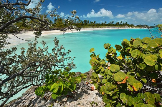 Little Exuma Picture Of Coral Gardens Great Exuma