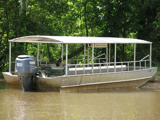 Dr. Wagner's Honey Island Swamp Tours: The boat!