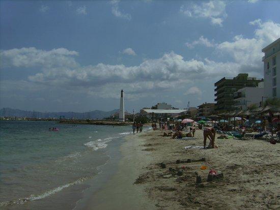 Hotel Haiti: Beach