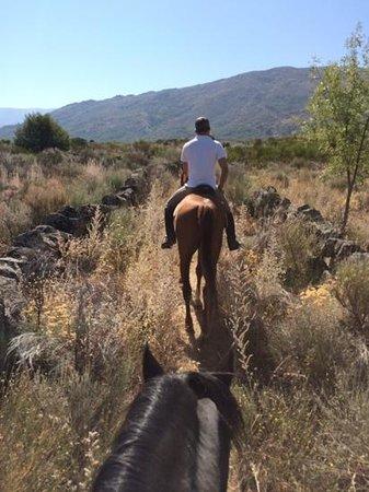El Hotelito: ruta por el valla de Iruelas