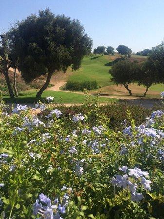 Donnafugata Golf Resort & Spa : Vista del campo da golf dalla piscina.