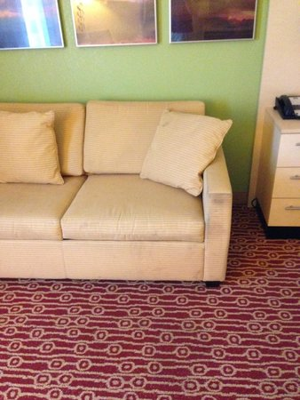 TownePlace Suites Savannah Airport: Dirty couch, pillows just thrown
