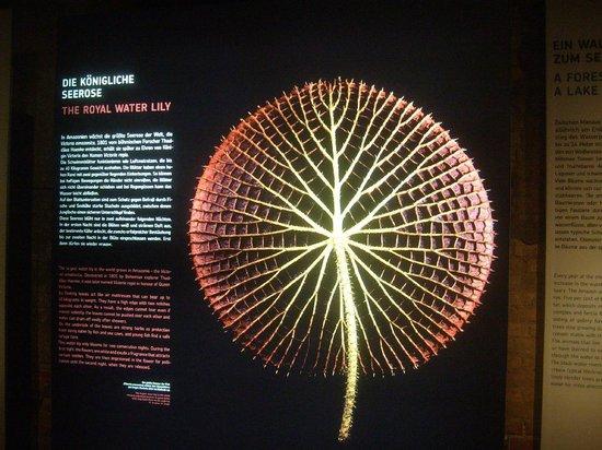 Panometer: Ausstellung