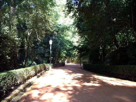 The Alhambra: Path to Alhambra Cuesta Gomerez