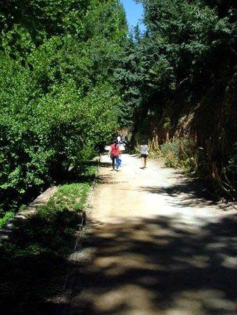 The Alhambra: Cuesta Rey Chico
