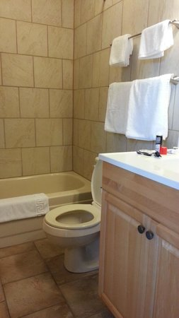 Canyon Court Motel: Bathroom