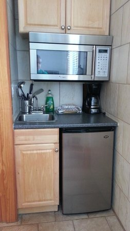 Canyon Court Motel : Fridge, microwave and sink