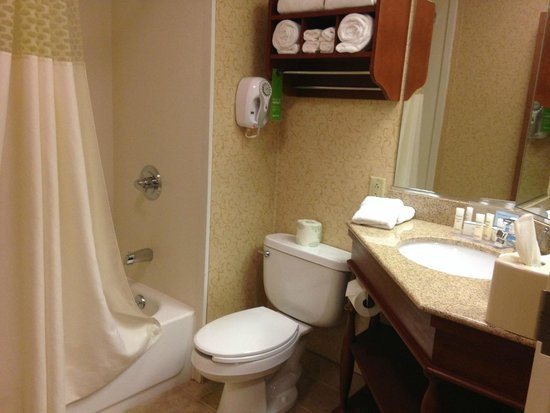 Hampton Inn & Suites Binghamton / Vestal: Clean - large bathroom