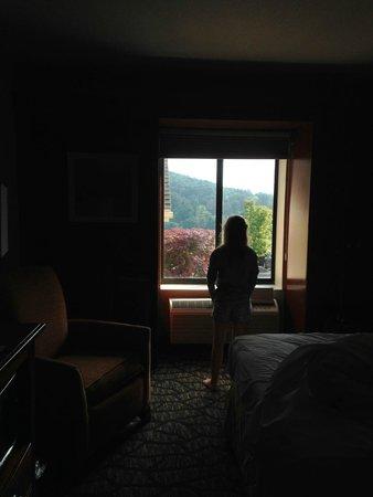 Hampton Inn & Suites Binghamton / Vestal : Nice view!