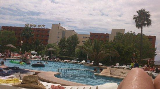 HSM Canarios Park : Sports Pool
