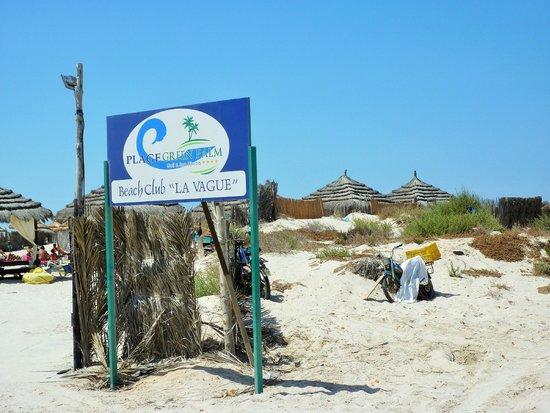 Green Palm : la route qui mène à la plage