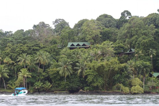 Aguila de Osa Inn: Habitaciones desde la bahia