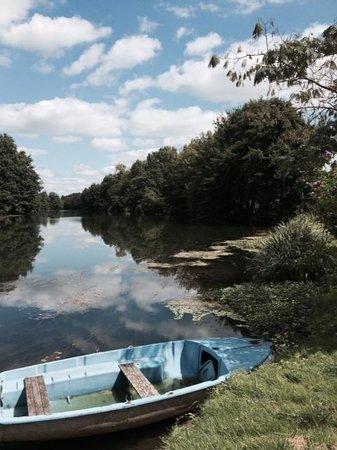 Le Bateau d'Emile : Vue de la terrasse, l'Isle