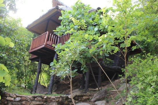 Montalay Beach Resort : tree top bungalow