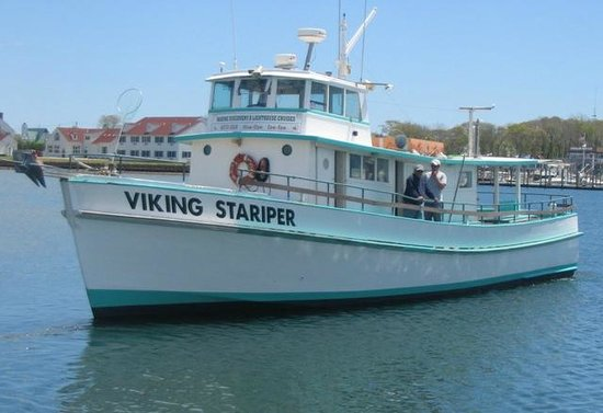 Montauk luxury charter boat viking fivestar picture of for Montauk fishing party boats