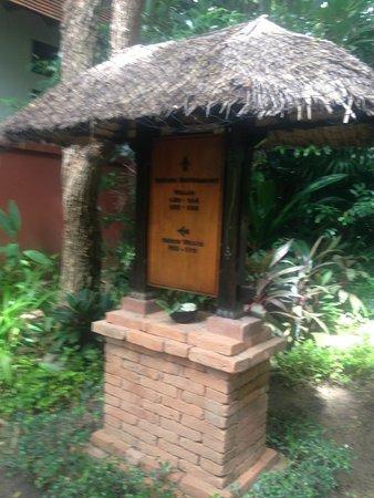 Renaissance Koh Samui Resort & Spa 24