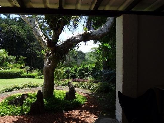 Brief Garden - Bevis Bawa : Schitterend uitzicht vanuit de woning