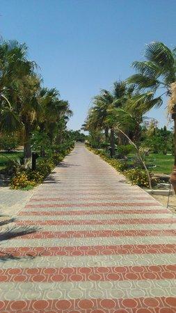 Coral Beach Hurghada Resort : Here's A wonderfull photo of the pool/beach road