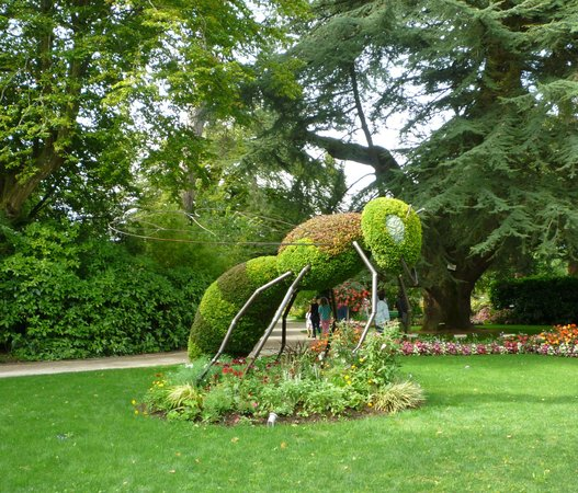 Jardin des plantes de Coutances : Insect themed displays