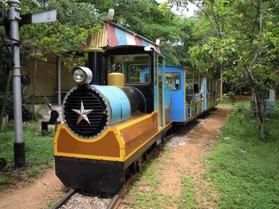 Railway Museum Mysore: toy train joy ride
