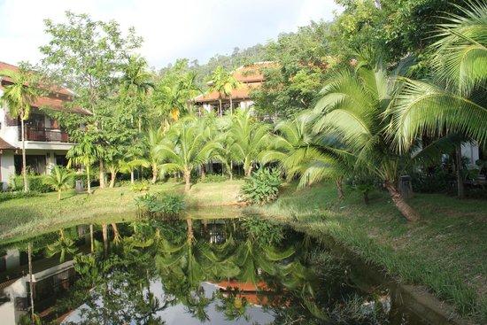 Khaolak Laguna Resort : Garten