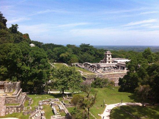 Palenque ruinas: Mayan marvel