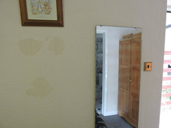 Tregenna Hotel : Wet spots in the wall, mirror damaged by damp problem
