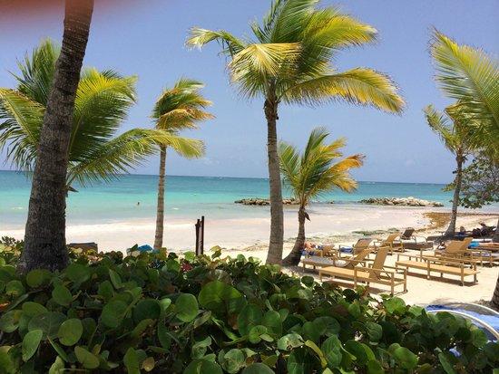 Sanctuary Cap Cana by AlSol: Beach