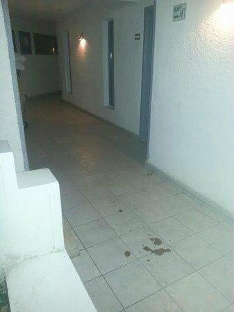 Kahramana Hotel: merda nel corridoio davanti alla camera