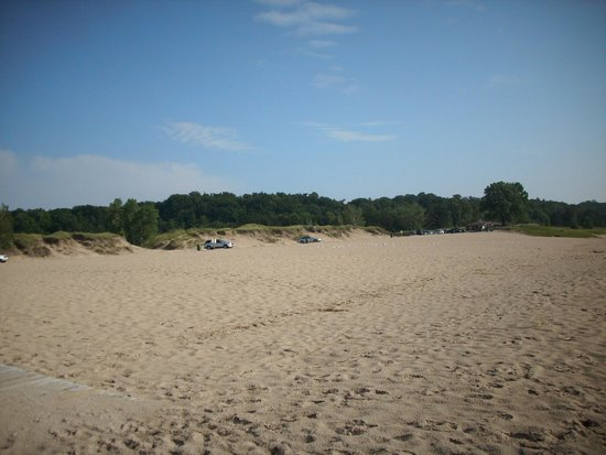 Oval Beach : Come her on a weekday: You'll have the place to Yourself