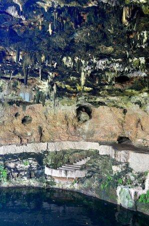 Cenote Zaci : vista desde arriba