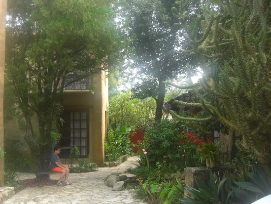 Guayaba Inn: Beautiful floral courtyard.