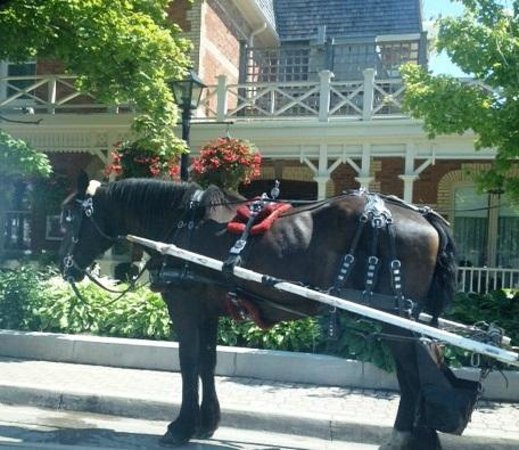 Prince of Wales: Horse drawn carriage outside of the hotel