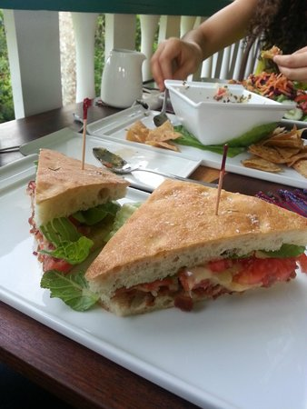 Guava Limb Cafe: Great sandwiches!