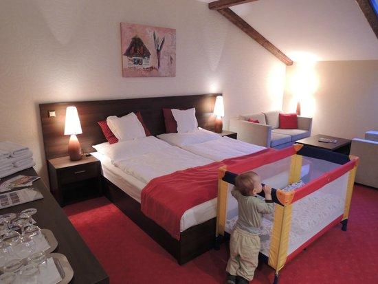 Wellness Hotel Chopok: Our room